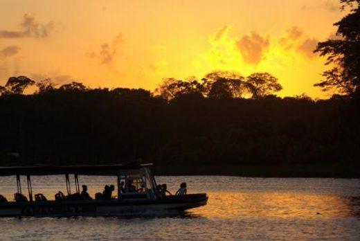 Explore the lush waterways of Tortuguero