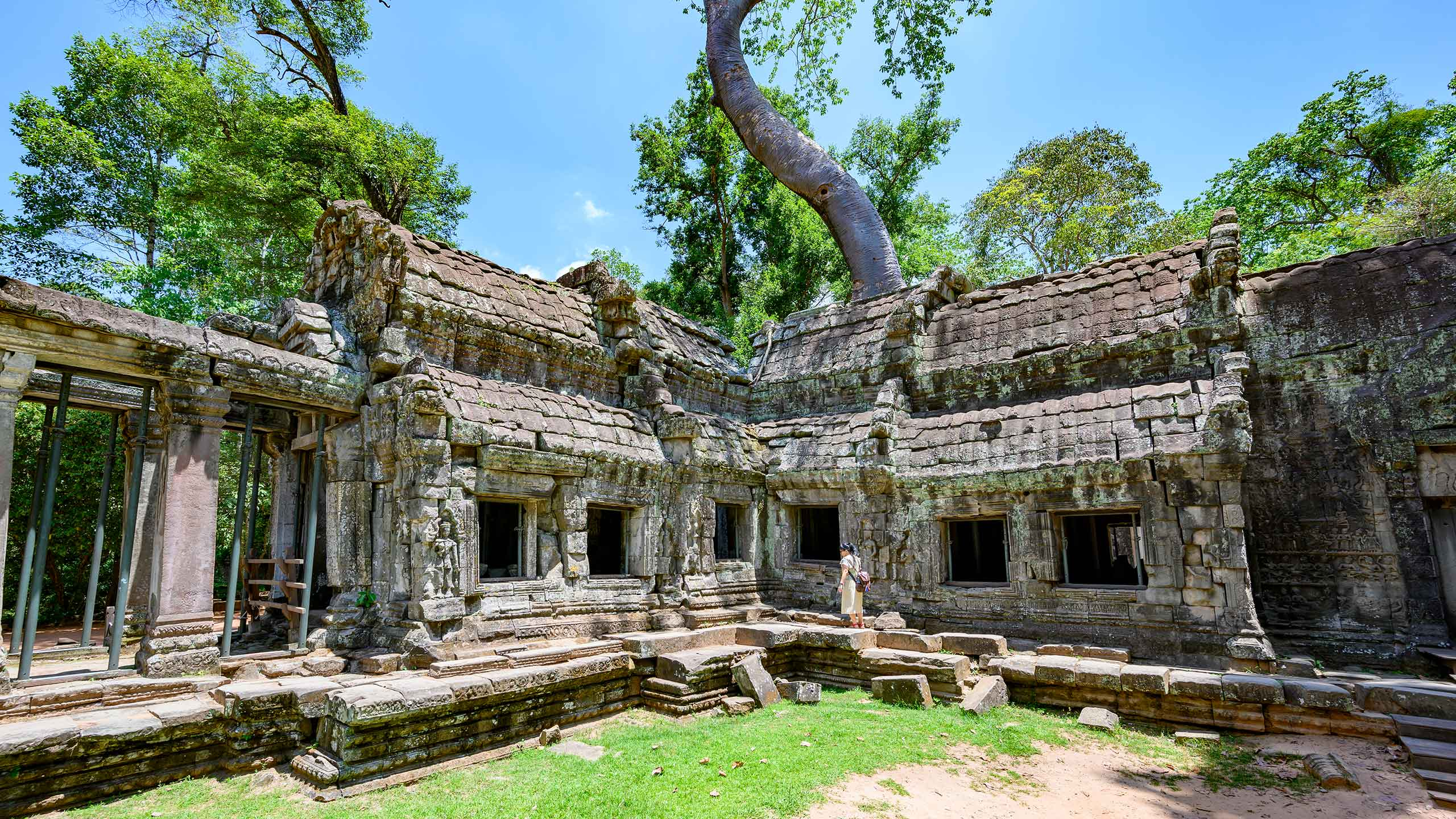 Ta Prohm temple at Angkor Wat, Cambodia