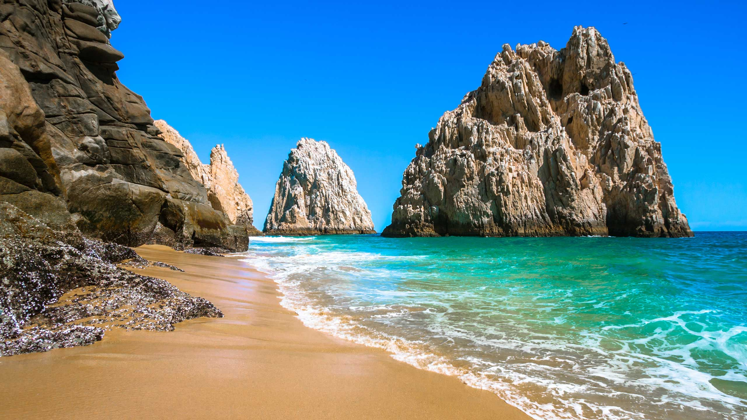 Rocky Beach in Cabo San Lucas
