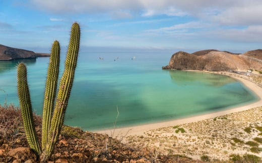 A beautiful and breathtaking Balandra Beach on the Gulf of California near La Paz Mexico on Baja California Sur.